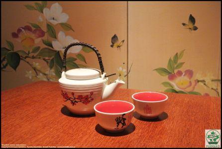Herbaciarnia- Satomi-Pisarzowice-Ogrod-japonski-Pudelko-ceramika