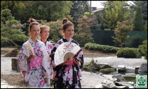 Herbaciarnia- Satomi-Pisarzowice-Ogrod-japonski-Pudelko-gejsze