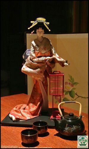 Herbaciarnia- Satomi-Pisarzowice-Ogrod-japonski-lalka-gejsza