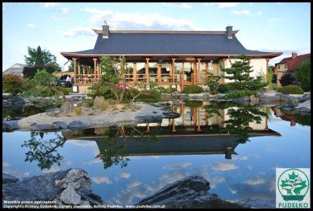 Herbaciarnia Satomi Pisarzowice Ogród Japoński 6 (Kopiowanie)
