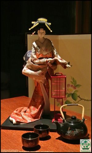 Herbaciarnia Satomi Pisarzowice Ogród Japoński Lalka Gejsza