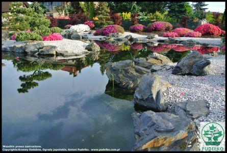 Ogród Japoński Pisarzowice Kwitnące Azalie Oczko (Kopiowanie)