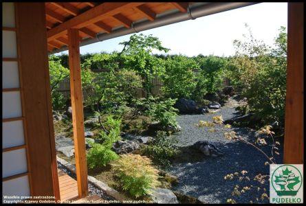Ogród Japonski Pisarzowice Karesansui 2016 (Kopiowanie)