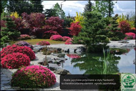 Ogrod-japonski-Pisarzowice-azalie-maj-2016-www