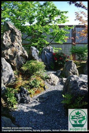 Ogrod-skalny-japonski-Pisarzowice-karesansui-2016-1
