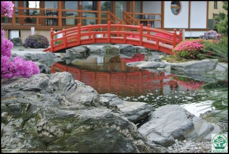 Mostek Japoński Ogród Pisarzowice