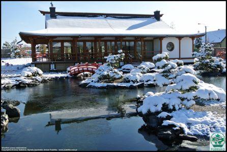 Zimowy Ogród Japoński Pisarzowice 2015
