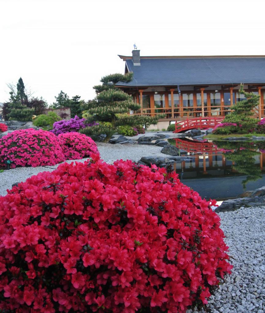 ogrod-japonski-pisarzowice-karesansui14